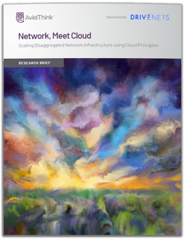 AvidThink-Network-and-cloud